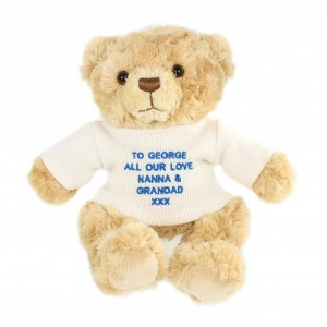 Blue Teddy Message Bear