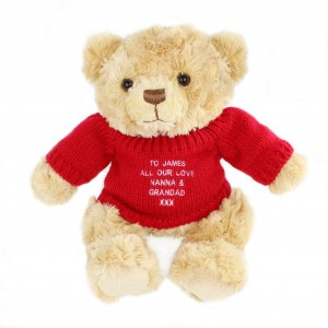 Teddy Message Bear in Red Jumper